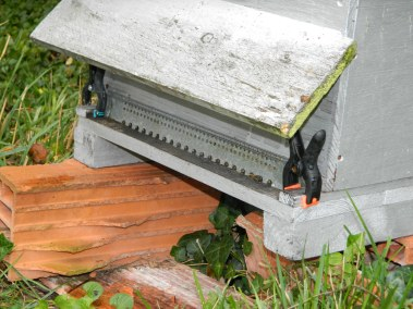 Dipositif de double grille devant la ruche.